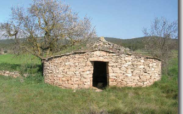 barraca_vinya_calbisbe